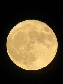 Super Moon von susanbecruising