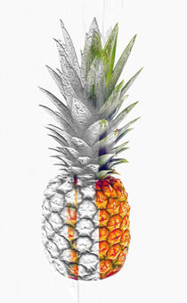 Pineapple N.1 by oliverp-art