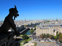 Notre Dame Gargoyle and View of Paris by susanbecruising