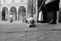 Sigh! von Azzurra Di Pietro