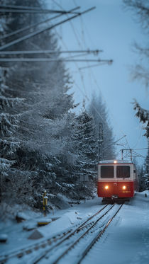 Cog railway, Tatra Mountains von Tomas Gregor