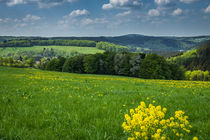 Frühling im Sauerland by Simone Rein