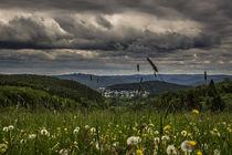 Sommer im Sauerland by Simone Rein
