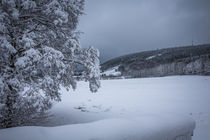 Winter im Sauerland by Simone Rein