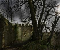 Castles in my Mind von lesimagesdejon