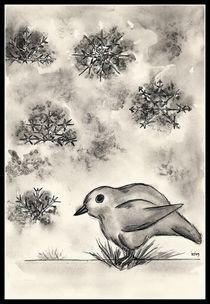 Poor blackbird by dieroteiris