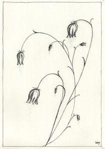 bellflower swirl by dieroteiris