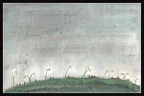 A Midsummer Night's Walk by dieroteiris