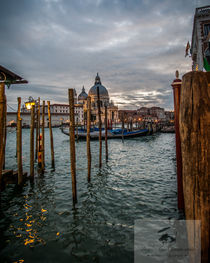 After the rain in Venice by dayle ann  clavin