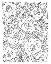 Roses  von mikart
