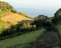 Hügel am Atlantik von art-dellas