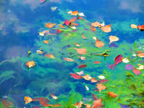 Autumn leaves on water 3 by lanjee chee