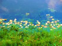 Autumn leaves on water 4 von lanjee chee