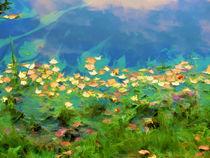 Autumn leaves on water 5 von lanjee chee