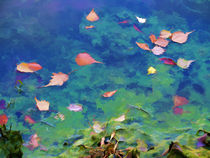 Fall leaves on river 2 von lanjee chee