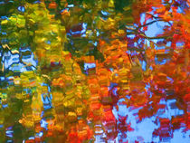 Fall leaves on river 5 von lanjee chee