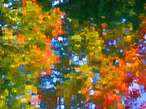 Fall leaves on river 7 von lanjee chee