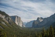 'Yosemite' by Qi Xin