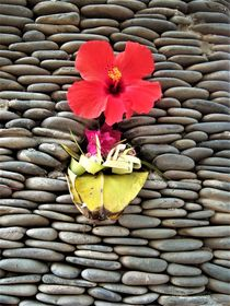Bali, eine Opfergabe von assy