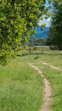 Feldweg von Stephan Gehrlein