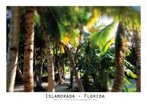 Islamorada Florida by Lise Ringkvist