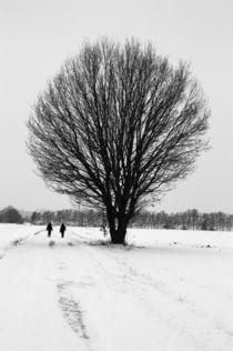 Winterlandschaft von frakn