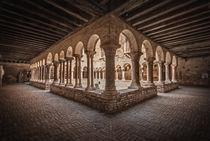 Venice Chiostro di Sant'Apollonia by Maurizio Fecchio