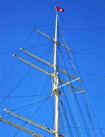Mast der Rickmer Rickmers, Hamburg by assy