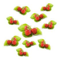 Red strawberries fruits on leaves von Arletta Cwalina