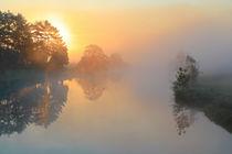 Licht und Nebel by Bernhard Kaiser