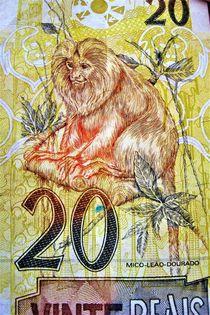 brasilianischer Zwanzig Real Geldschein von assy