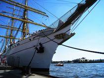 Die Gorch Fock, im Hamburger Hafen von assy