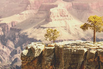 USA - Grand Canyon by Chris Berger