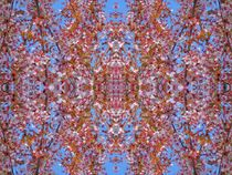 Kirschblüten Fantasie 5 by kattobello