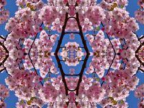 Kirschblüten Fantasie 3 by kattobello