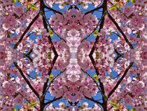 Kirschblüten Fantasie 2 by kattobello
