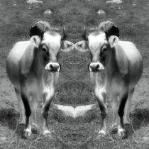 Retro Kuh Zwillinge von kattobello
