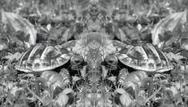 Retro Schildkröten Zwillinge von kattobello