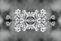 Eiskristalle 3 by kattobello