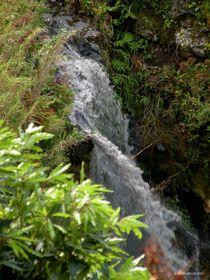 Wasserfall auf Faial by art-dellas