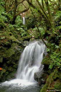 Wasserfall by art-dellas