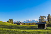 Landschaft im Allgäu by Christine Horn