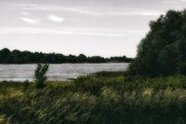 Rheinspaziergang von Petra Dreiling-Schewe
