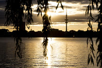 Sunset in Hamburg von nyolina