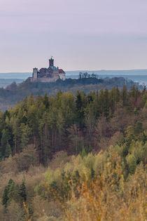 Die Wartburg bei Eisenach von Alexander Hauck