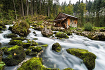 Mühle by Holger Schultz