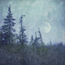 The trees and the moon  by Priska  Wettstein