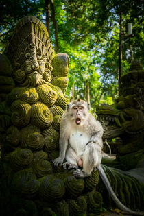 Affe auf Statue von moxface