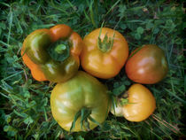 Fresh tomatoes and bell pepper von lanjee chee
