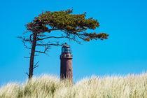 Leuchtturm Darßer Ort von Rico Ködder